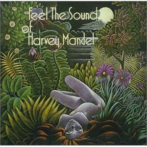 FEEL THE SOUND OF       US 1974 original, Acid folk blues progressive