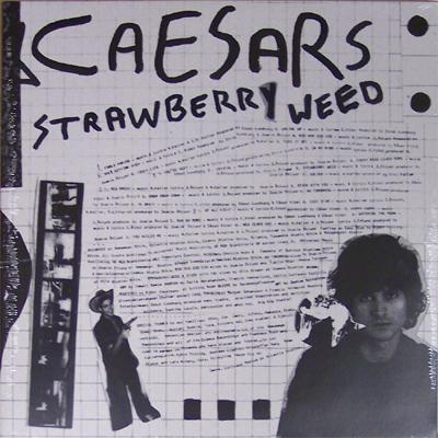 STRAWBERRY WEED  Limited edition Double-Lp