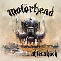 AFTERSHOCK  2013 Album, 180g Vinyl