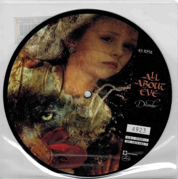 DECEMBER Picture Disc