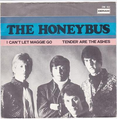 I CAN'T LET MAGGIE GO / Tender Are The Ashes   Dutch pressing