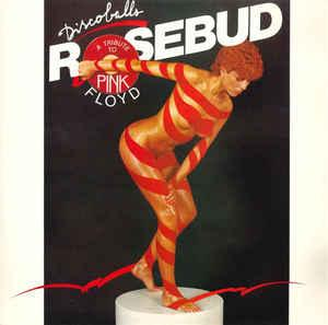 ROSEBUD - DISCOBALLS - A TRIBUTE TO PINK FLOYD (GER) Nude cover (LP)