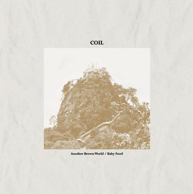 COIL - ANOTHER BROWN WORLD/ BABY FOOD Li Marbled vinyl (LP)