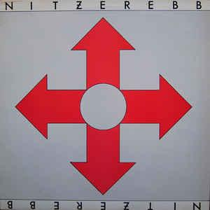 """NITZER EBB - ISN'T IT FUNNY HOW YOUR BODY WORKS Their 1st 12"""" (12"""")"""