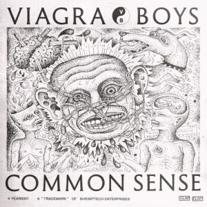 "VIAGRA BOYS - COMMON SENSE (12"")"