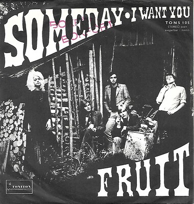 "FRUIT - SOMEDAY / I WANT YOU Rare Swedish ps, 1970 Psych (7"")"