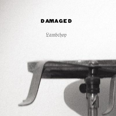 LAMBCHOP - DAMAGED US Original Pressing, Comes With Innersleeve and Poster (LP)