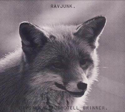 UPPSALA STADSHOTELL BRINNER  Deluxe reissue