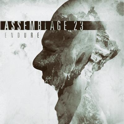ASSEMBLAGE 23 - ENDURE (LP)