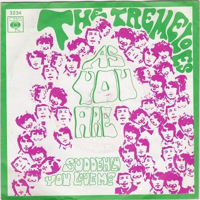 """TREMELOES, THE - AS YOU ARE / Suddenly You Love Me Dutch pressing (7"""")"""