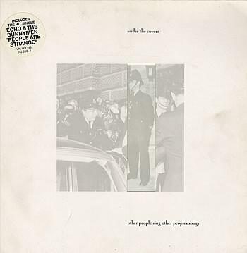 VARIOUS ARTISTS (POP / ROCK) - UNDER THE COVERS - OTHER PEOPLE SING OTHER PEOPLE''S SONGS (LP)