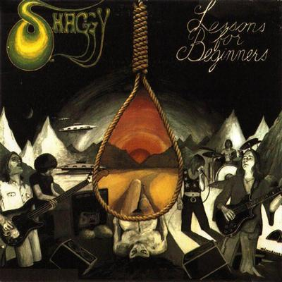 SHAGGY - LESSONS FOR BEGINNERS Reissue (LP)